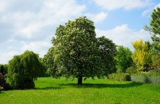 Checkliste Grundstück Kosten
